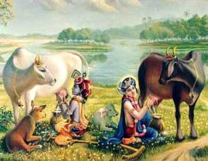 Lord Krishna milking a cow.