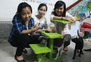 These Vietnamese children love their cats.  (Kairos Coalition)