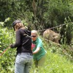 Elephant sanctuarian Carol Buckley takes up fencing