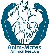 animal rescue kent, Anim-mates,
