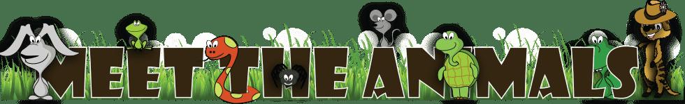 meet-the-animals of animal workshops Essex