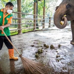 Un eveniment tragic a avut loc la o grădină zoologică din Spania! Incidentul este primul din istoria parcului