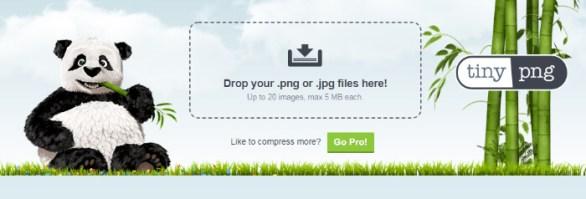 Réduire le poids d'une image (destiné à aller sur le web) avec tinyPNG