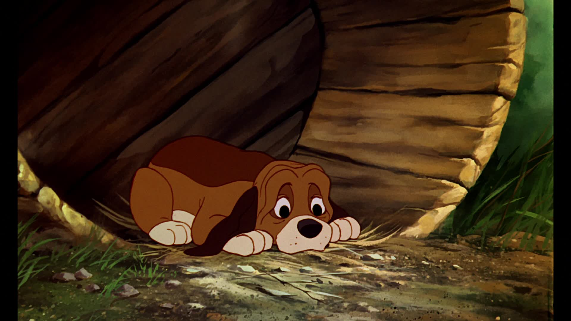 Fox And The Hound Screenshots The Fox And The Hound