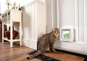 Sureflap chatière électronique