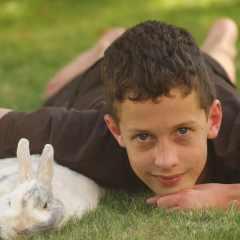 Comment rendre le lapin nain de votre famille heureux ?