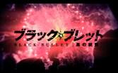 Black Bullet Wallpaper
