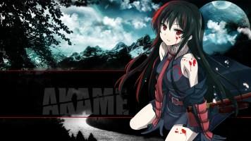 akame_ga_kill_06