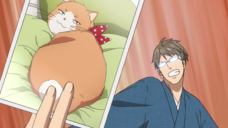 Sui from Yotsuiro Biyori brandishing a photo of his cat