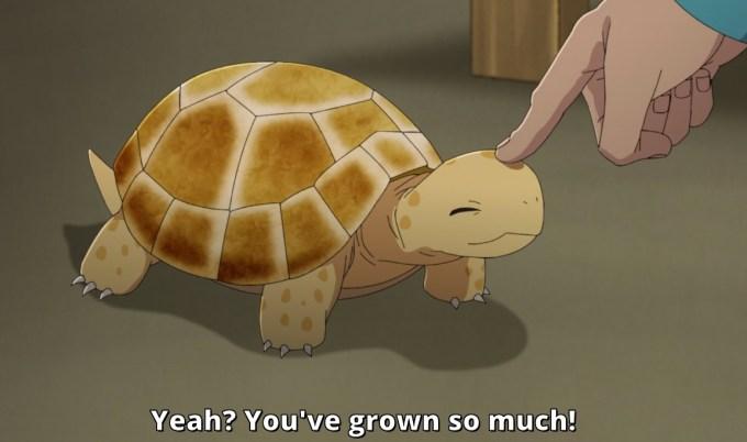 Minato petting his pet turtle.
