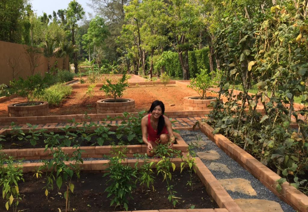 thailand s herb gardens