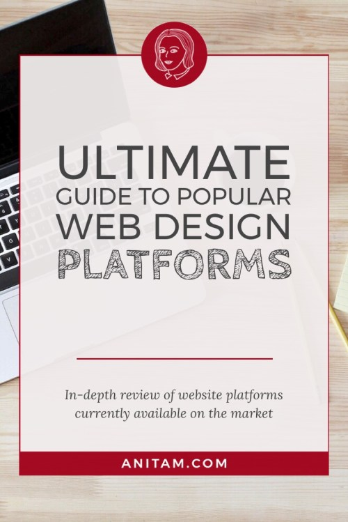 AnitaM - Ultimate Guide to Do-It-Yourself Web Design