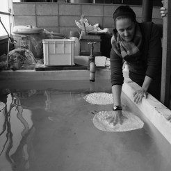 Anja Marais working in studio