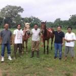 Berlatih Menunggang Kuda Sesuai Standar Cara Berkuda Yang Baik