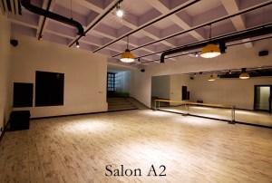 Latino Dans St+-dyosu +£mitk+Ây +Şubesi Salon 2