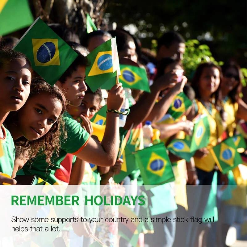 Brazil Stick Flag