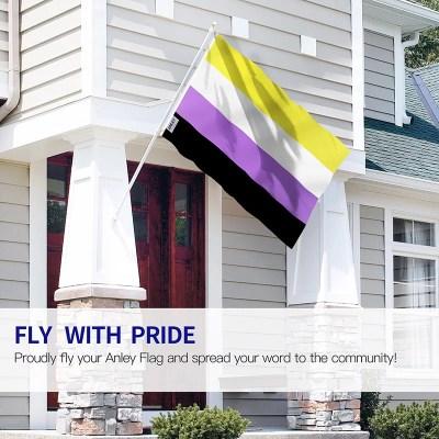 Non-binary pride