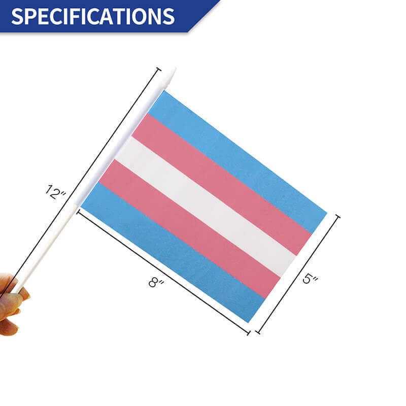 Transgender stick flag