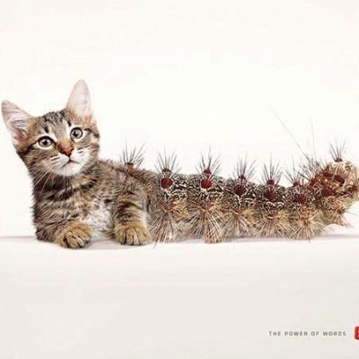 Scrabble Caterpillar