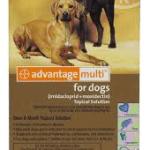 Advantage multi