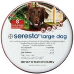 The Best Flea Collar Seresto Collar Product Review The