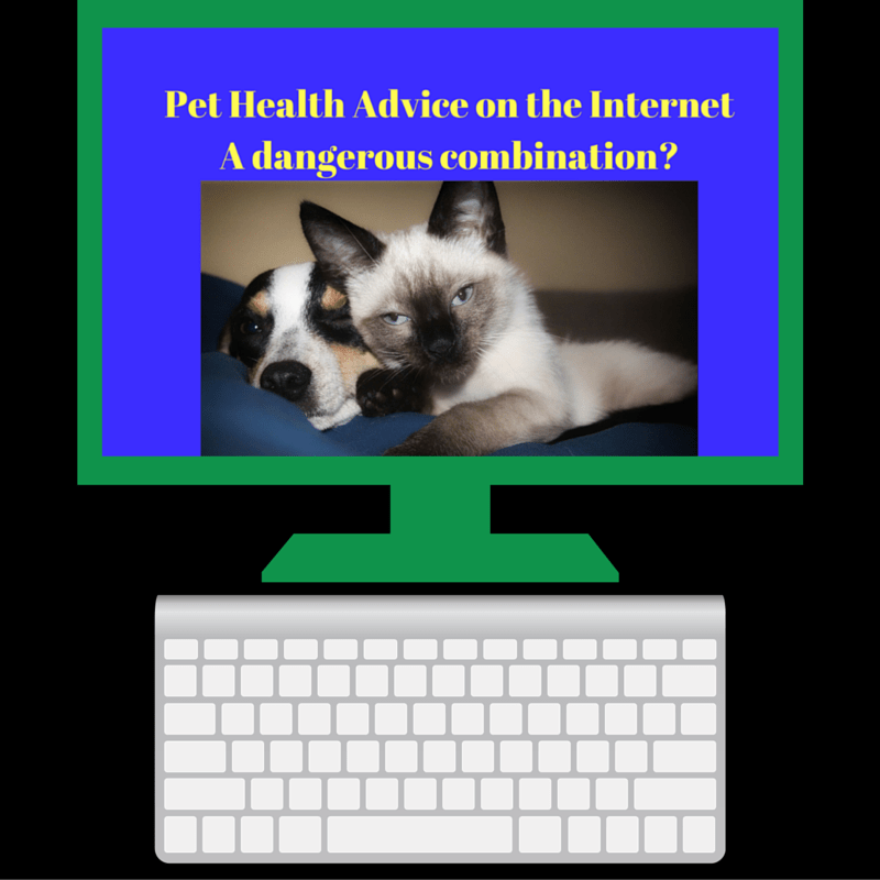 Pet Health Advice