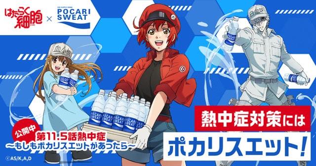 Hataraku Saibou estrena el episodio 11.5