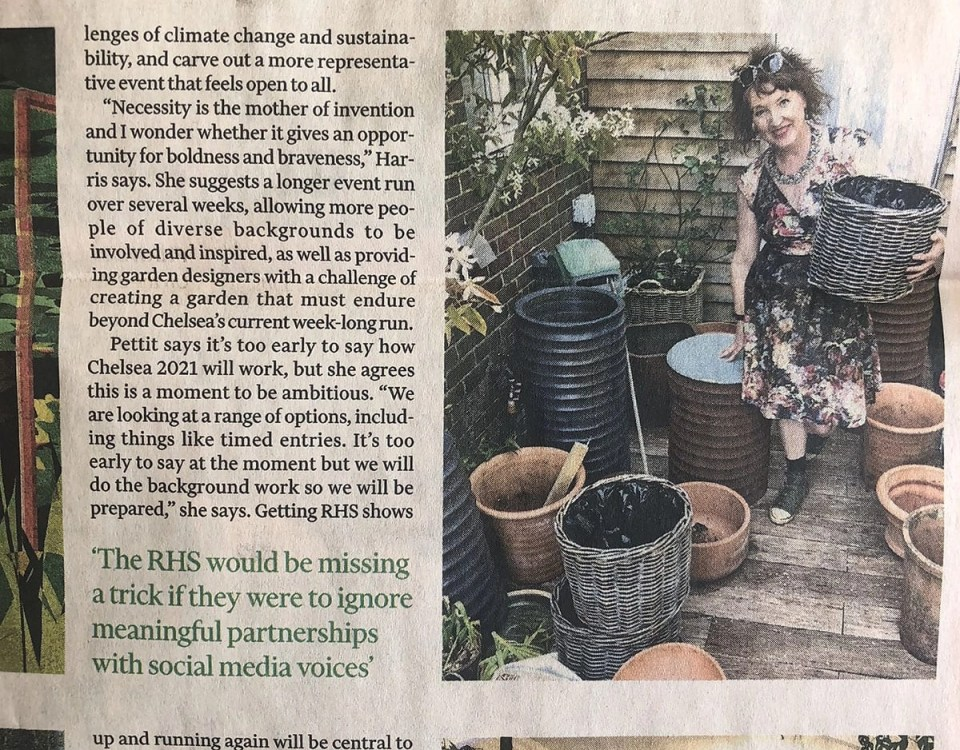 Ann-Marie Powell's own garden Features in the Financial Times