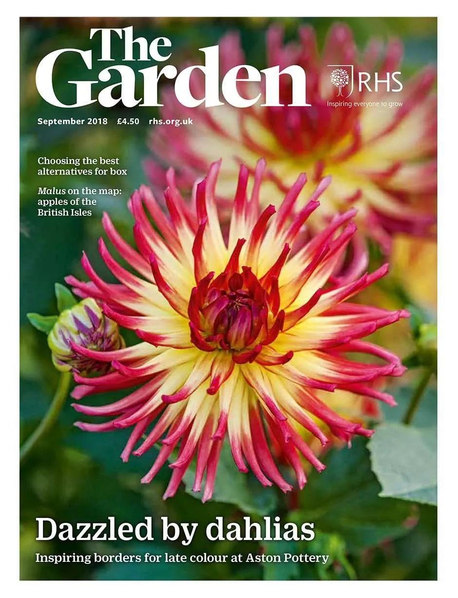 'A transformational gardening project' featuring Ann Marie Powell Gardens design