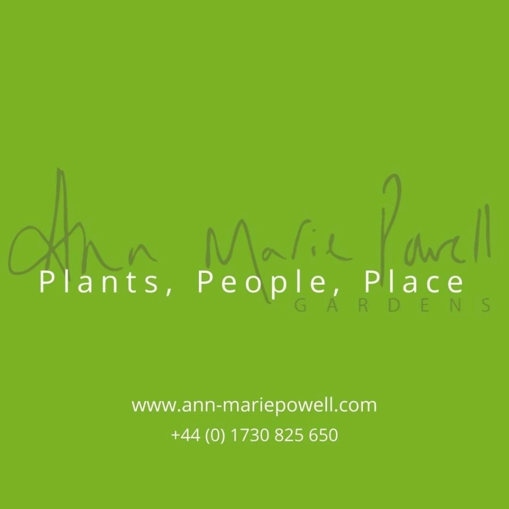 Ann-Marie Powell Gardens design from Petersfield, Hampshire
