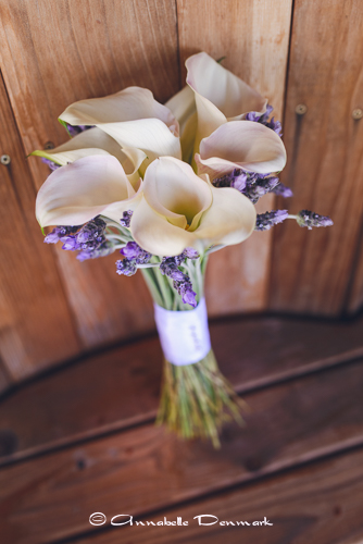 #annabelledenmarkphotography #colorado wedding  photographer