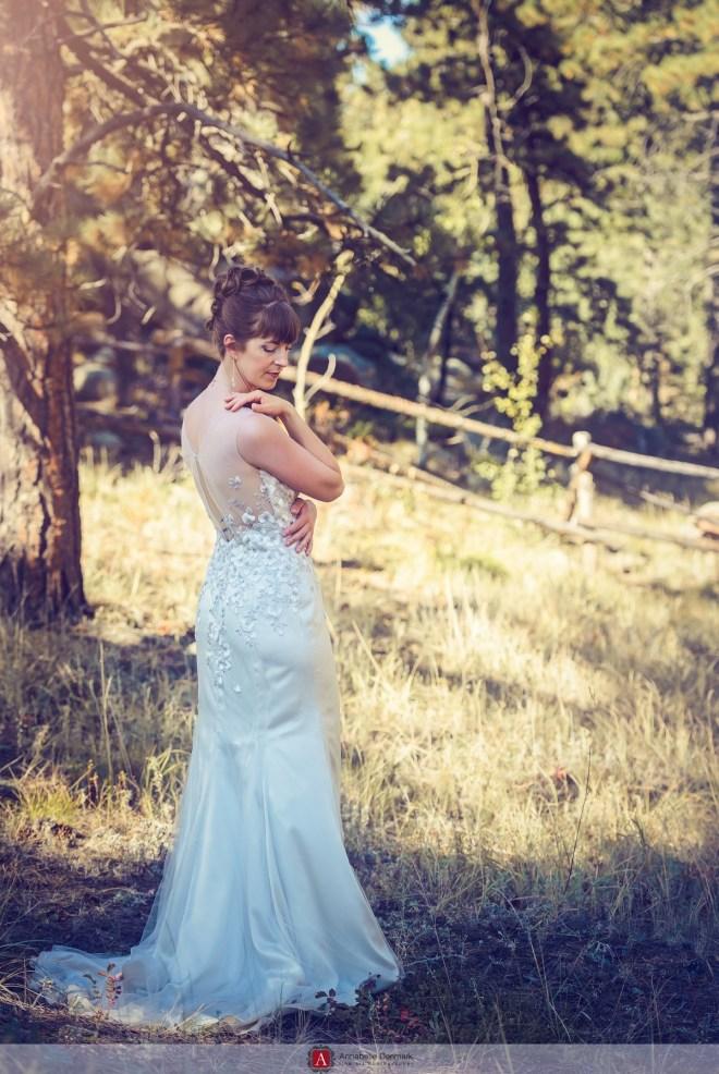 A mountain wedding in Estes Park