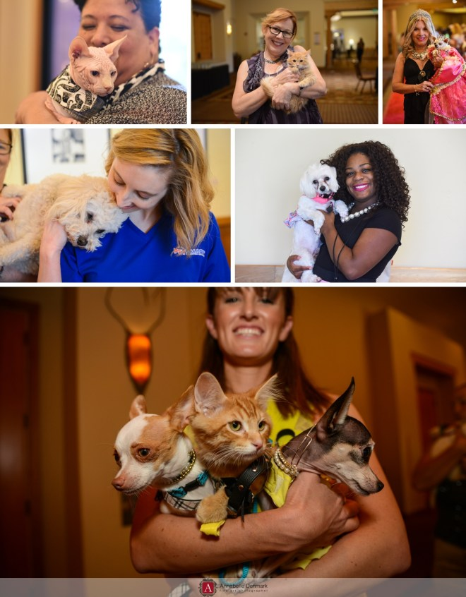 Bloggers and a Petsmart employee! with our four legged friends