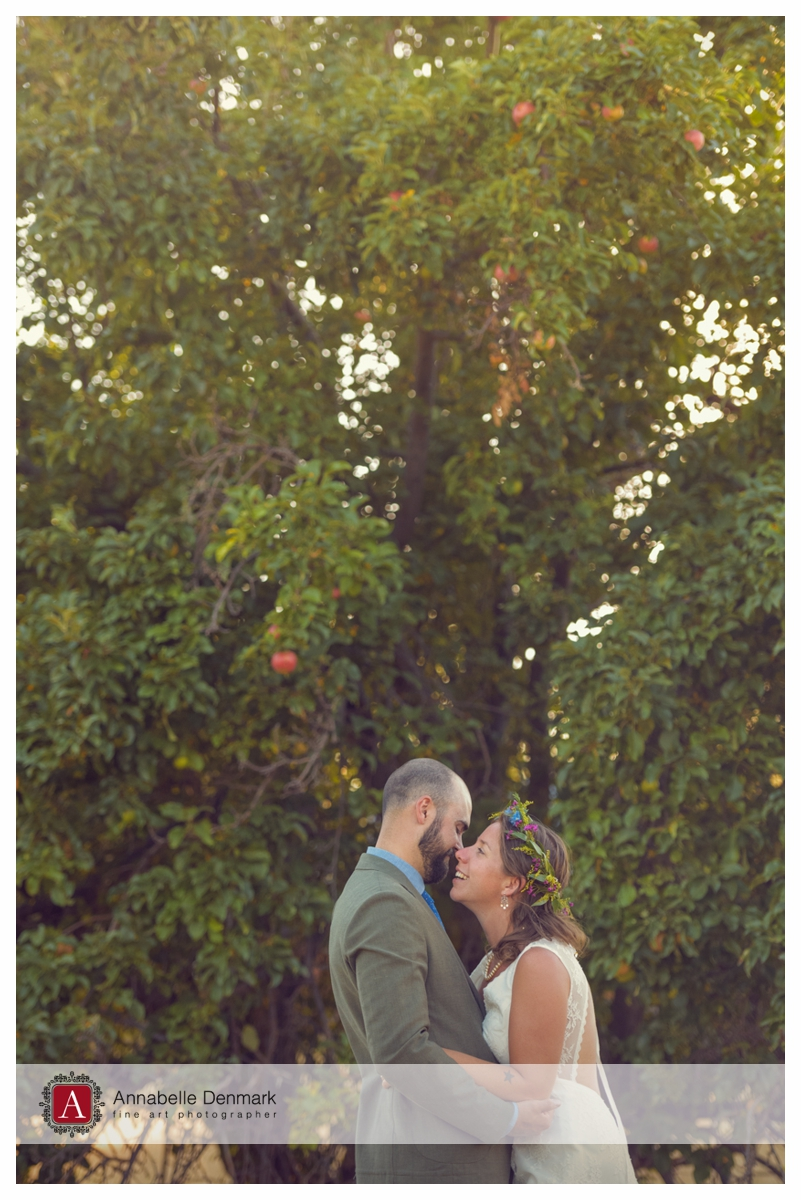 The Groom and Bride by the apple tree