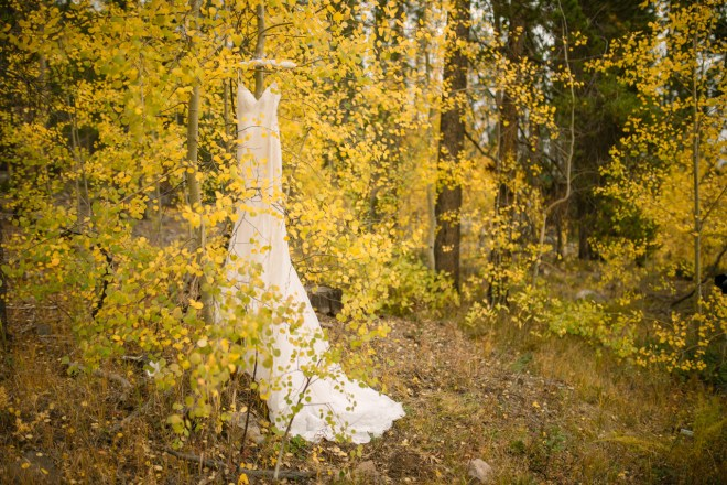 Wedding dress in the yellow Aspen trees