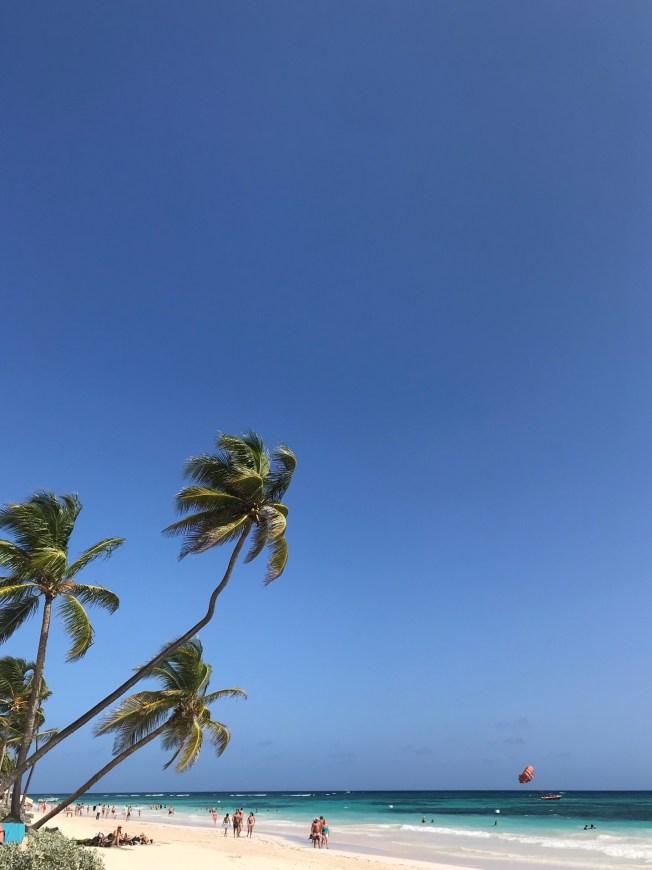 Strand med palmer, blå himmer, grönt hav och vit sand.