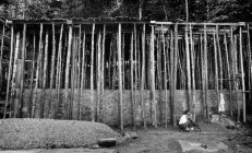 Scaffolding, Sri Lanka