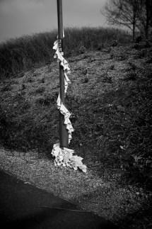 lamppost_ 18