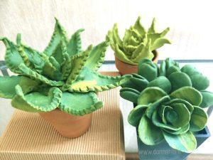 ambientata di succulente con la pasta al mais