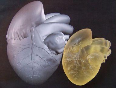 MAYA Heart Screen Shot 3D Model