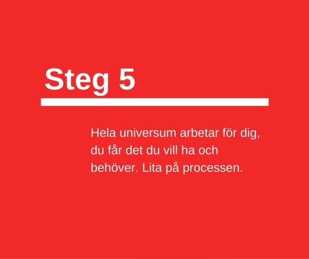 Steg 5