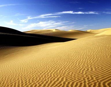 una voce dal deserto
