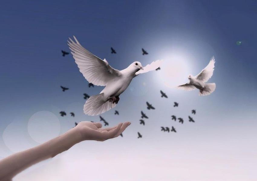 La pace è un dono di Dio e va chiesto