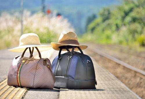 viaggio insieme