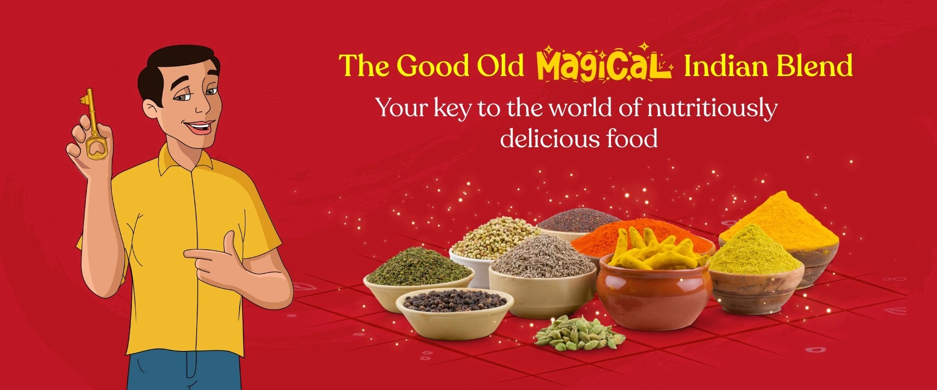 annapoorna-masala-the-good-old-magical-indian-blend-cover