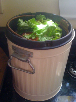 Borden - compost container on counter