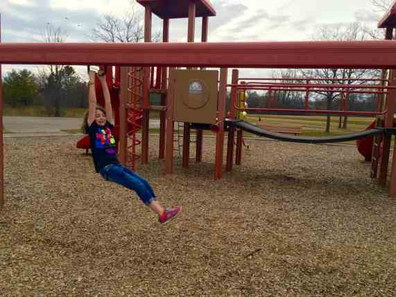 Mess Free Playgrounds - Southeast Area - Zip Line