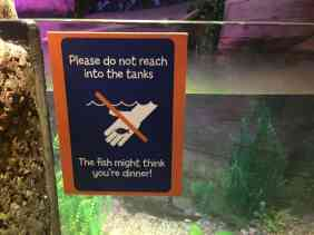 Sea Life Michigan Aquarium - Fun Sign