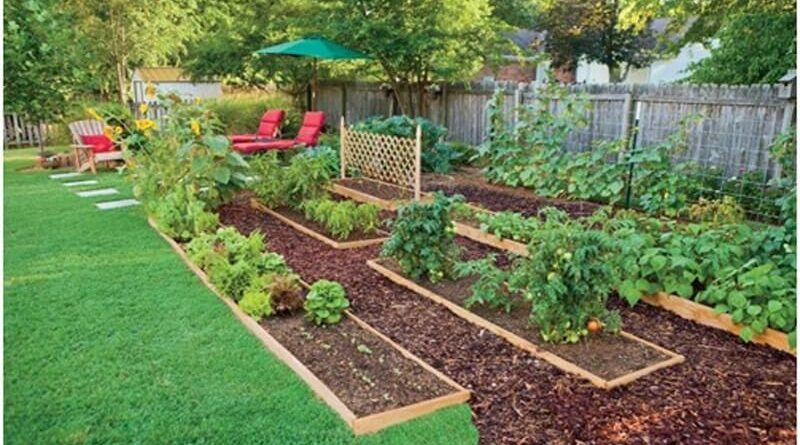 7 tips for the best home gardening on 54 Without Planning In A Beautiful Gardening id=34198