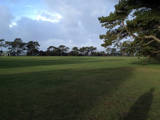 Netley Abbey Parkrun cricket pitch course